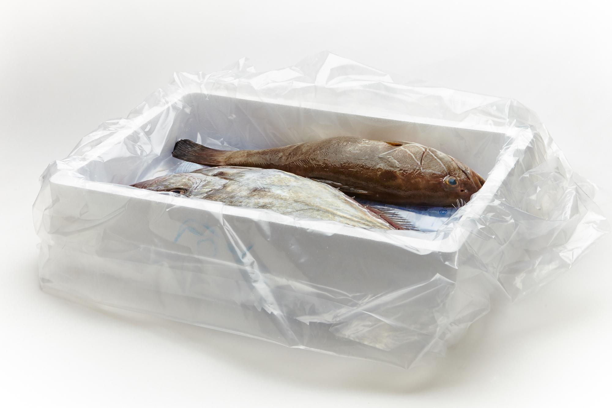 SEAFOOD BOX 4