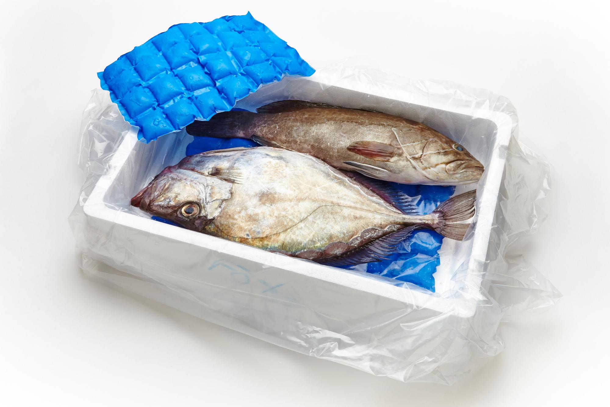 SEAFOOD BOX 5