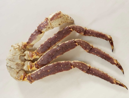 Nogi kraba kamczackiego